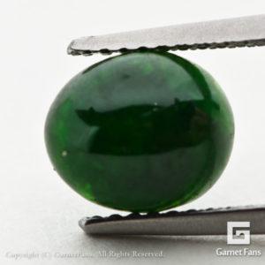 ggdm0071-ovc-00