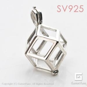 cs001-r12-sv
