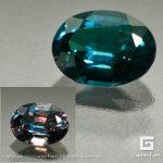 ggcg0181-ovl-01