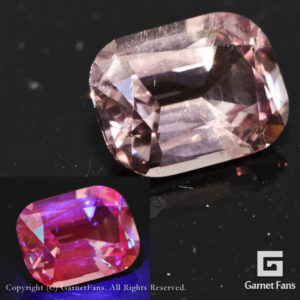 ggrl0207-cus-01