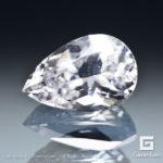 gglc0022-prs-08
