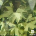 ggdm0127-rnd-08