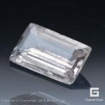 gglc0029-bkt-00