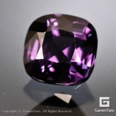 ggcg0471-cus-00