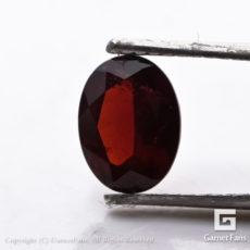ggpy0056-lot-00-4