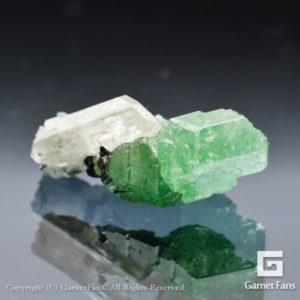 ggtv334-mnl-00
