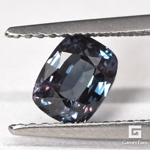 ggcg0495-ant-00