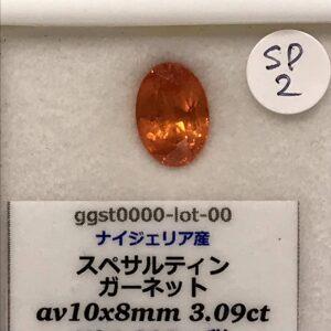 ggst0000-lot-00-SP2