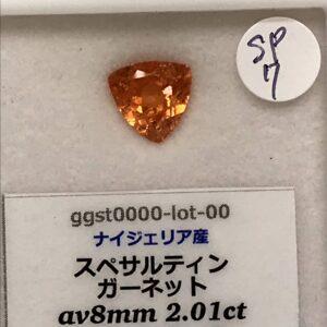 ggst0000-lot-00-SP7