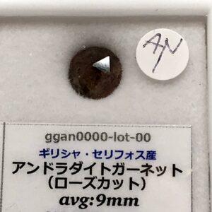 ggan0000-lot-00-an1