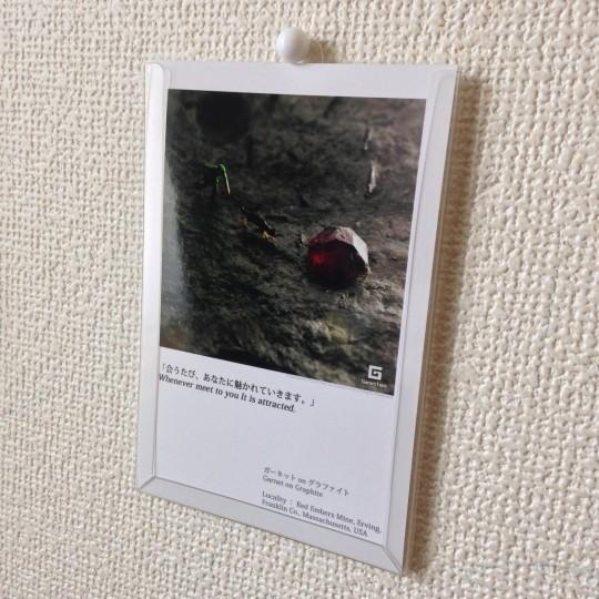 写真 2016-04-25 10 09 06